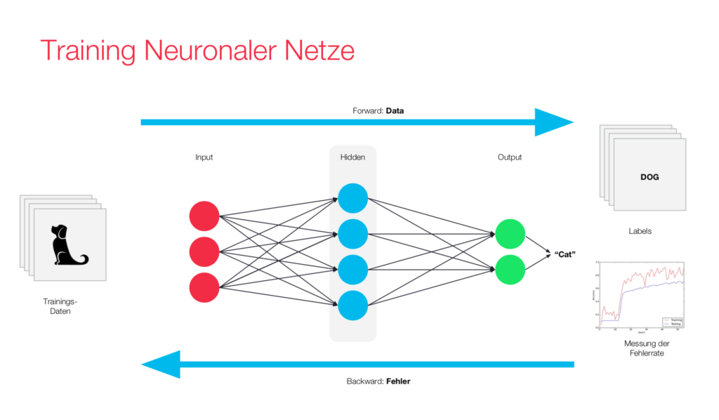 Visualization of neural network Training through backpropagation